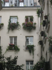 Passagelancrewindowboxes